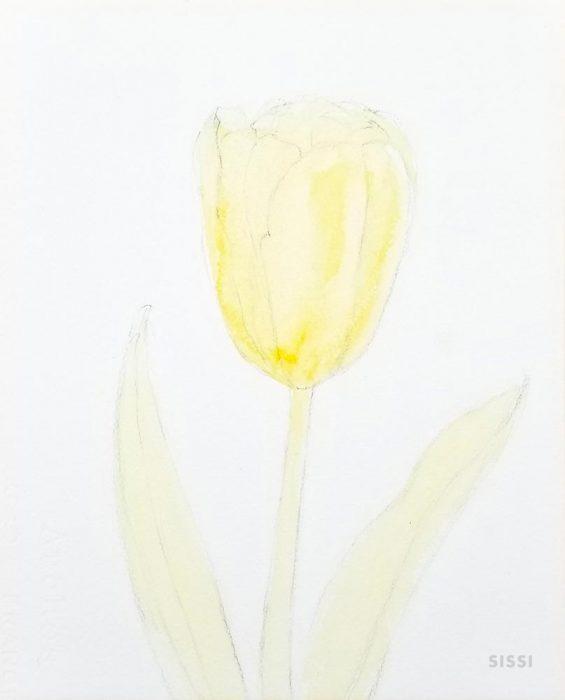 tulip2web