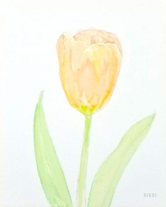 tulip3web